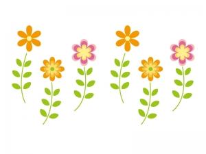 庭の隅に咲いていた花【稲田教室】 | 教室からのお知らせ | 超個別指導塾まつがく